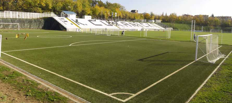 the pitch at Cukaricki Stadium