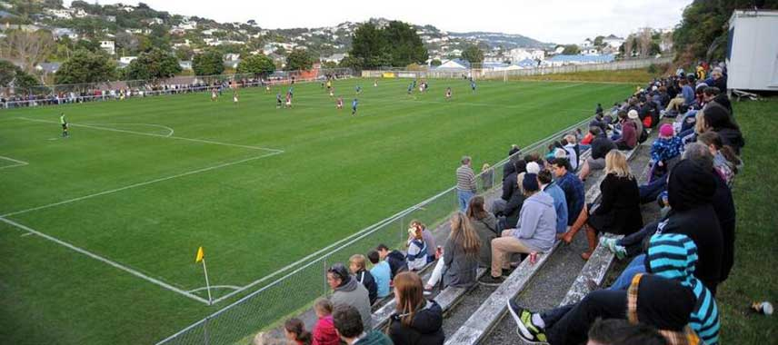 View of David Farrington Park pitch from the corner