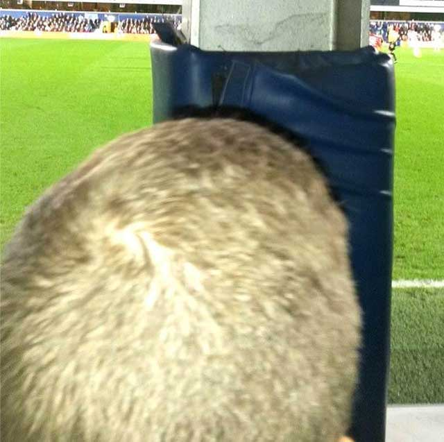 Back of man's head restricted view