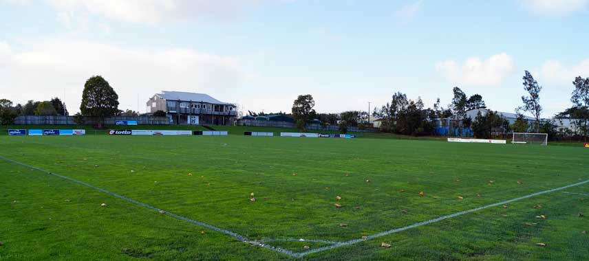 Pitch at Taylor Park Stadium