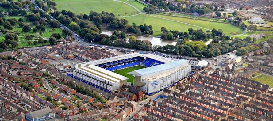 The Goodison Park Pitch