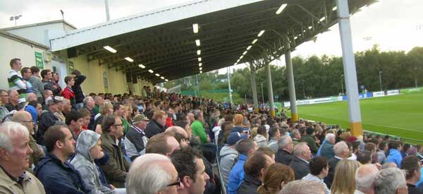 UCD Fans inside the stadium on match day.